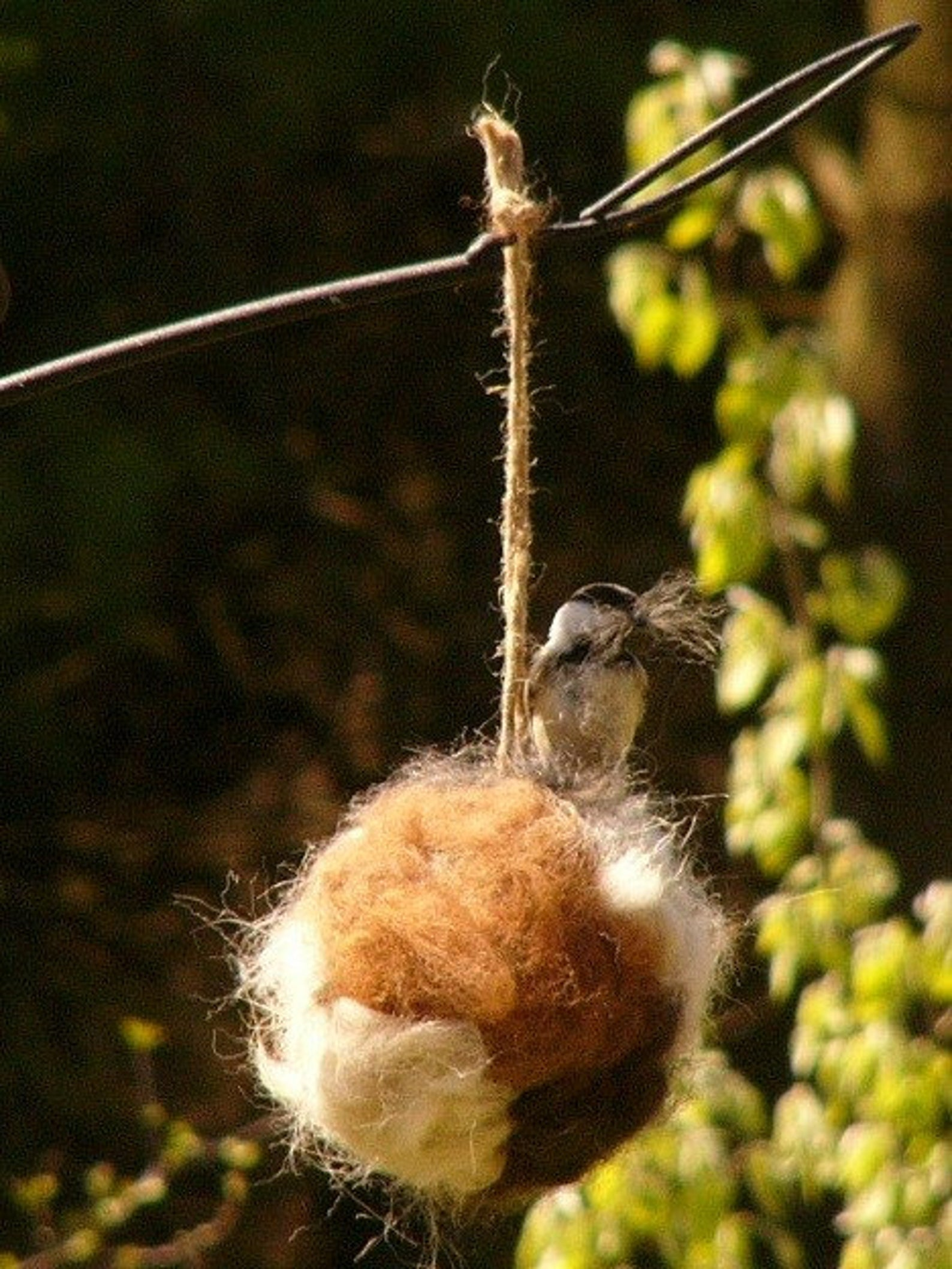 Alpaca Bird Nesting Ball by Gifter World