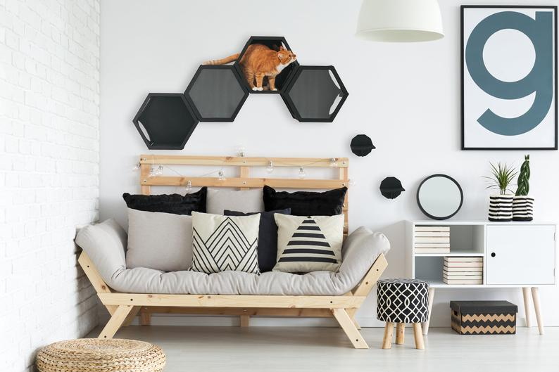 Cat Wall Shelves, Cat Tree Furniture by Gifter World