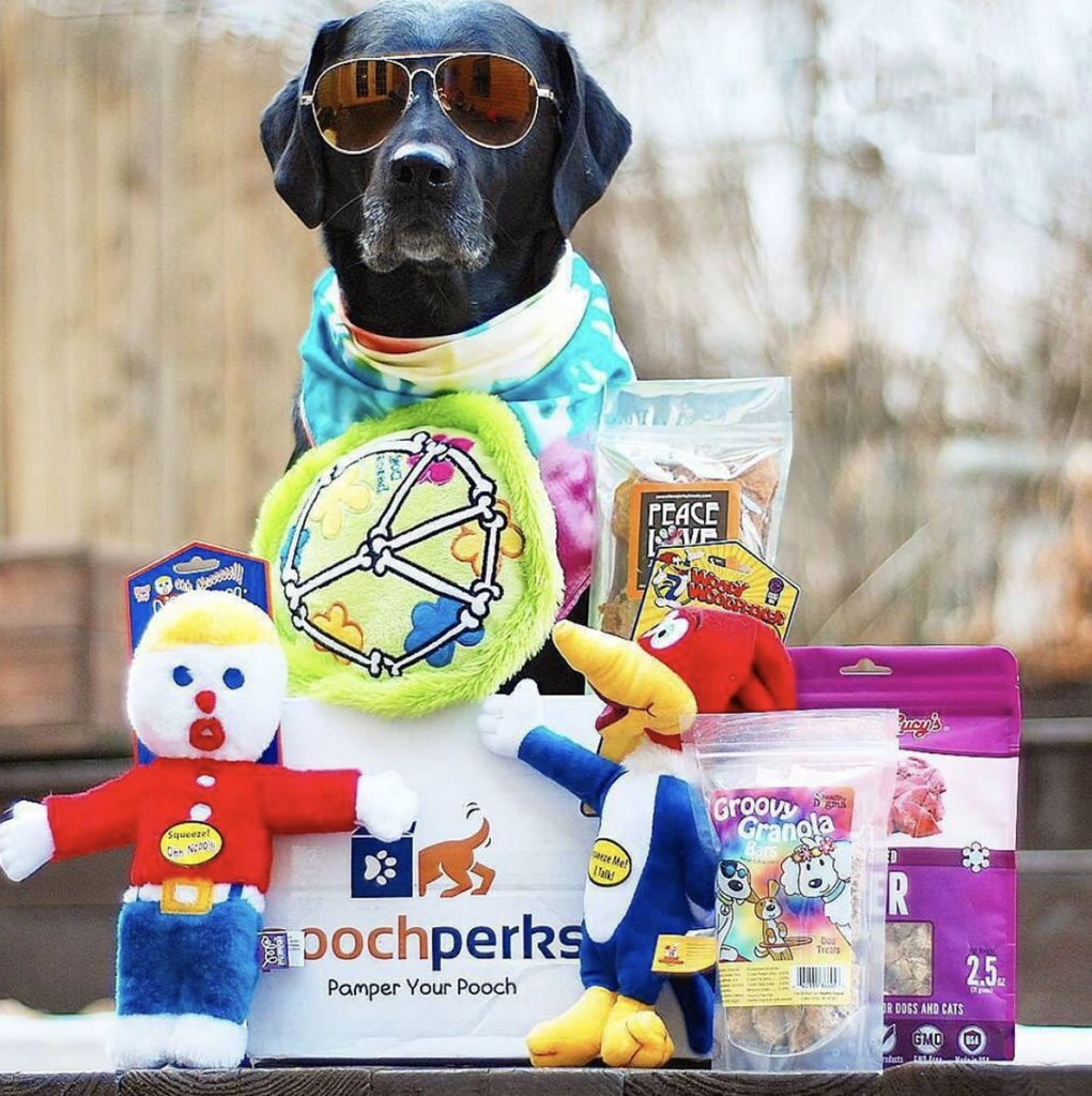 Pooch Perks Dog Subscription Box and Unique Gifts for Pets by Gifter World