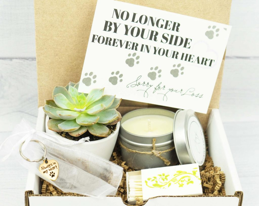 Pet Sympathy Gift Set and Unique Gift Ideas for Someone Who Has Lost a Pet by Gifter World