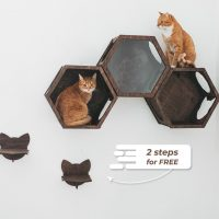 Cat-wall-shelves-by-gifter-world